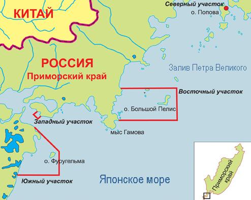 Дальневосточный морской заповедник. Автор24 — интернет-биржа студенческих работ